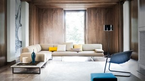 Busnelli - Blumun Sofa or Sectional